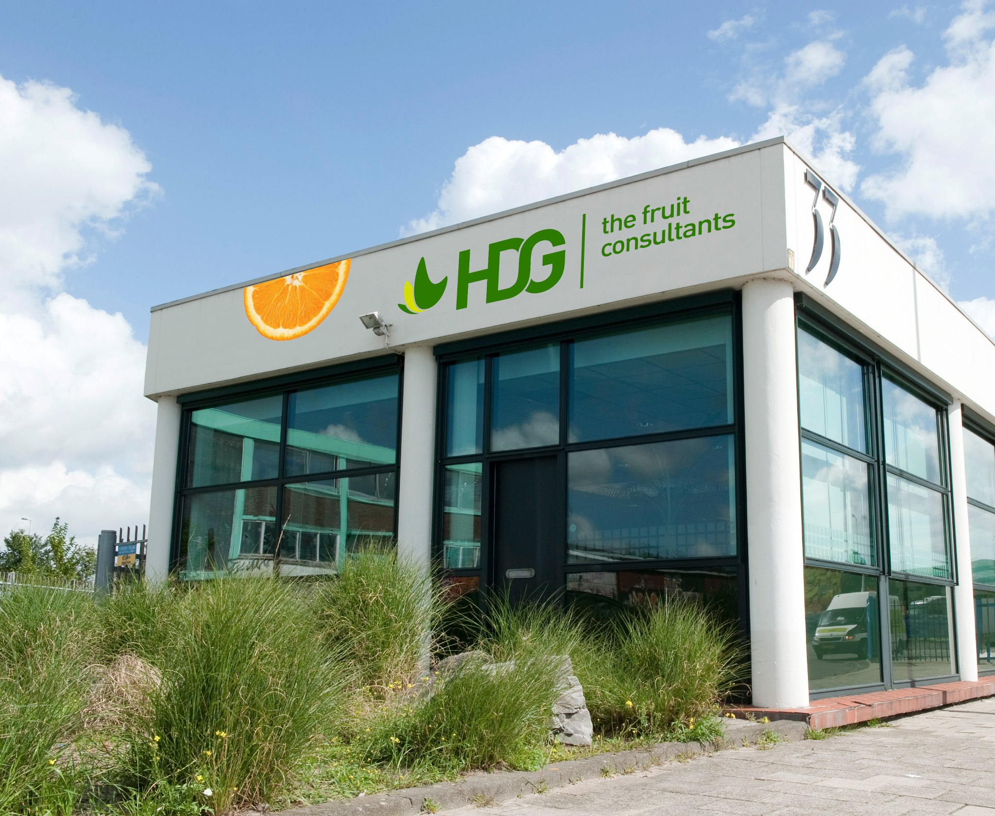 HDG the fruit consultants wedstrijdsponsor XerxesDZB - VV Brielle