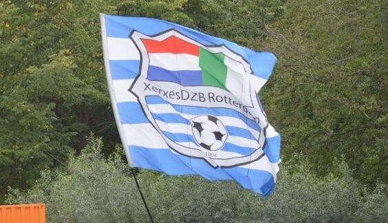 Voormalig XerxesDZB spelers in het betaald voetbal